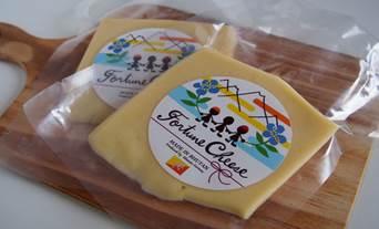 フォーチュンチーズ