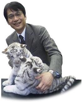 平川動物園ホワイトタイガー